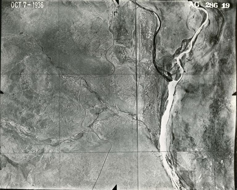 AG 286-19