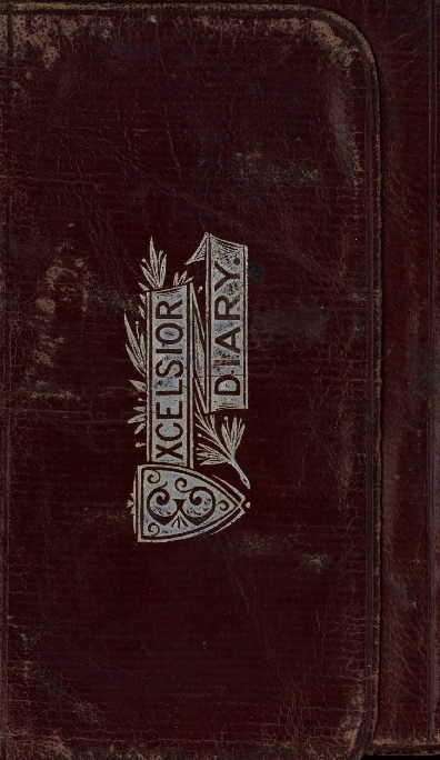 Excelsior diary for 1880
