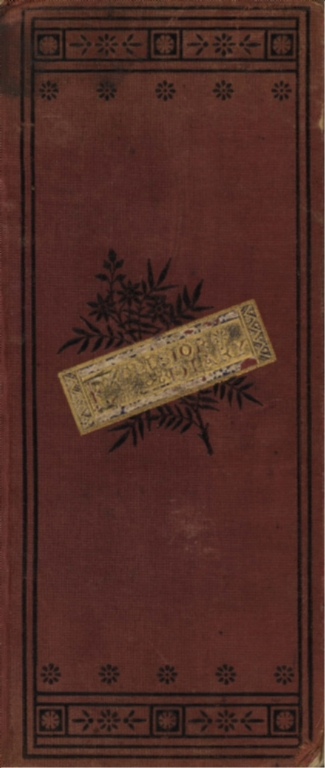 Excelsior diary for 1881