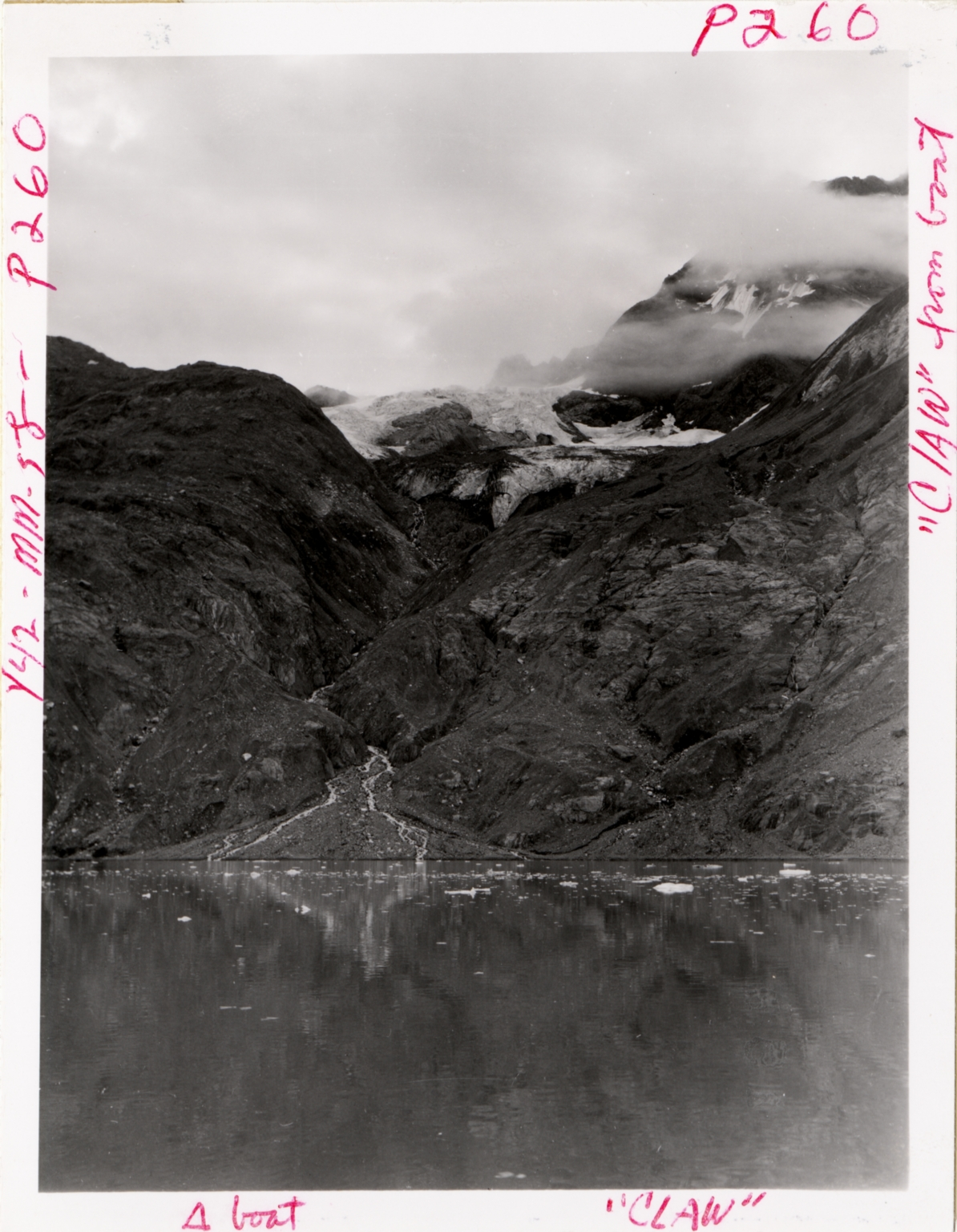 Unnamed glacier, Johns Hopkins Inlet, Alaska, United States