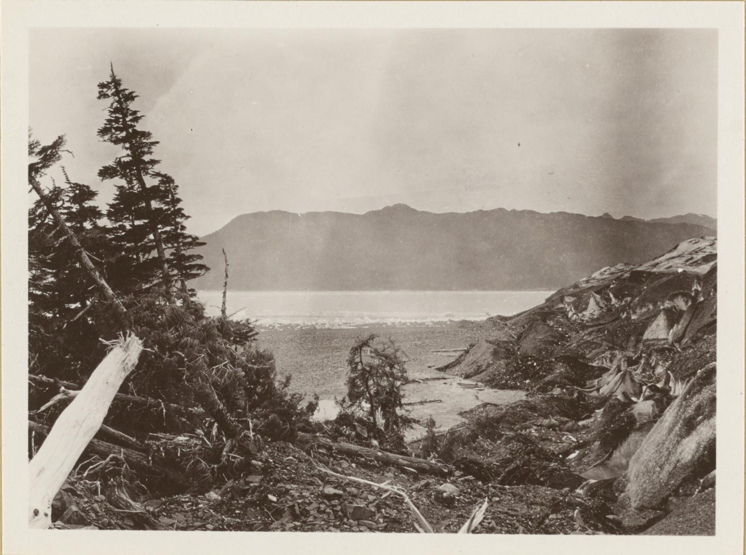 Columbia Bay, Heather Island, Alaska