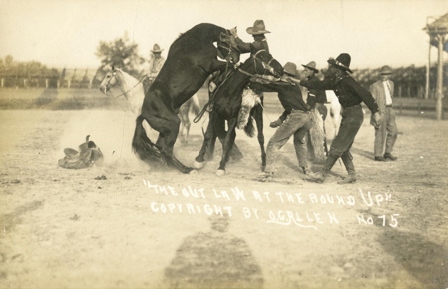 Men blindfolding a bronco after rodeo event