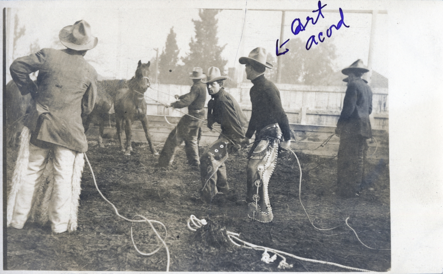 Art Acord and others roping horses