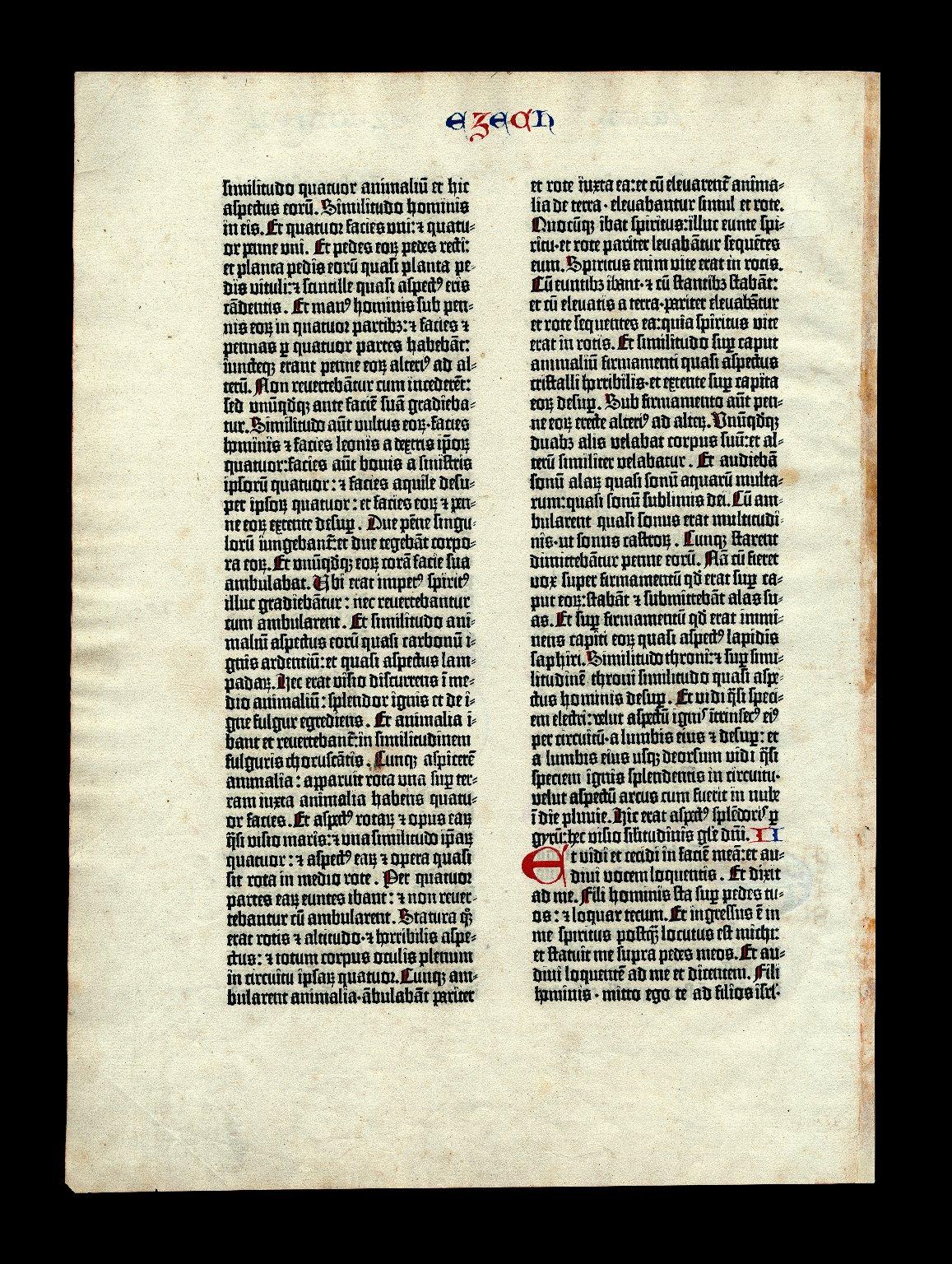 Gutenberg Bible Leaf