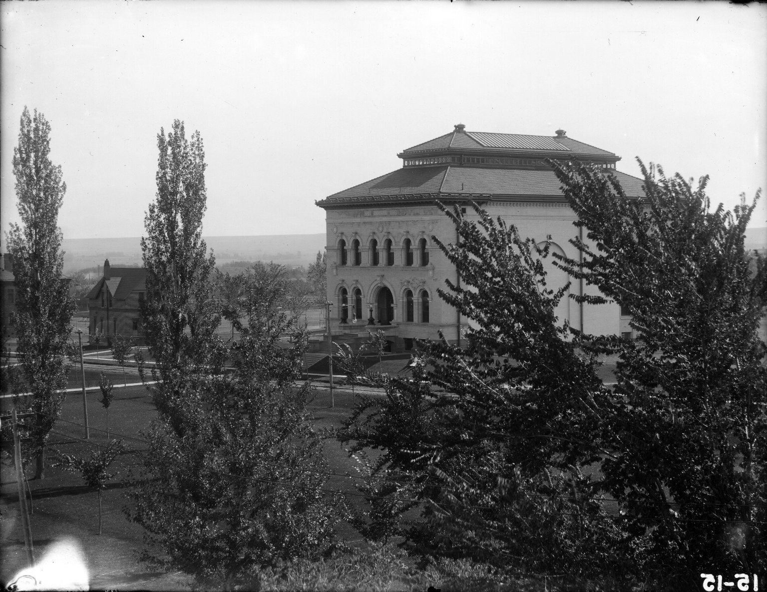 Library With Poplars