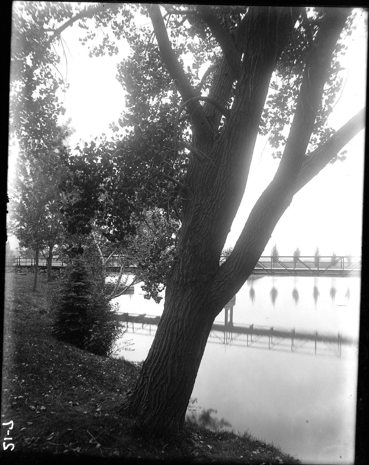 U. Lake (W Shore)