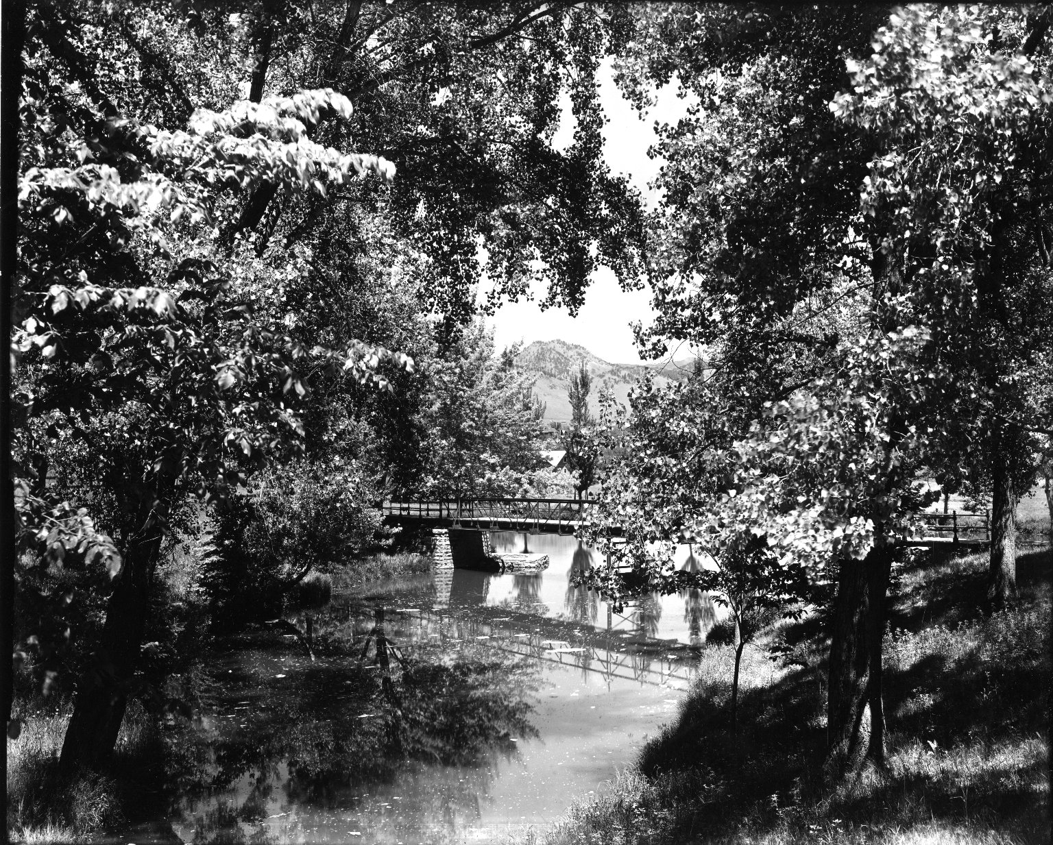 [Steel Bridge Over Varsity Lake]