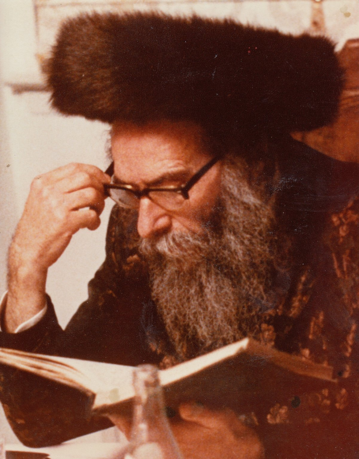 Rabbi Gedaliah Kenig studying from a book.
