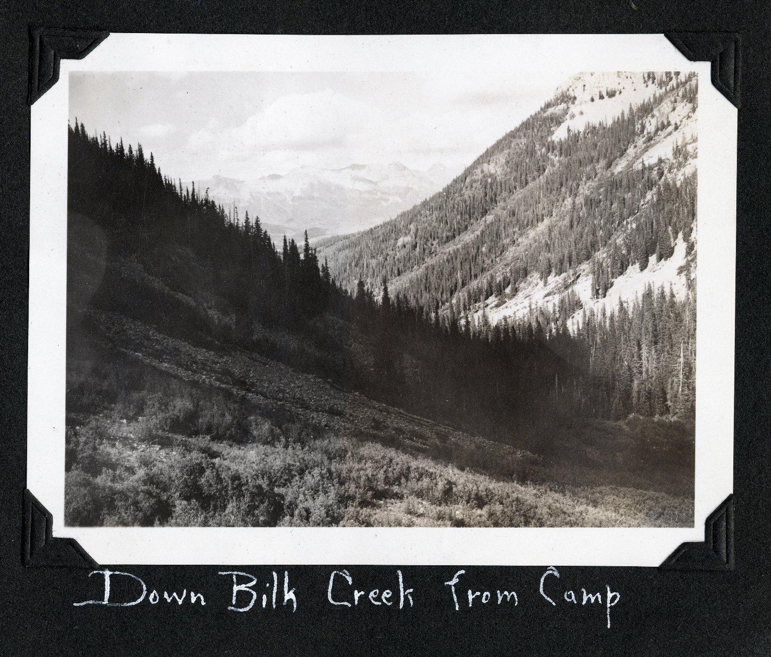 Down Bilk Creek from Camp